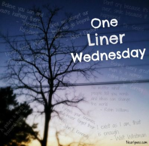 one liner wed